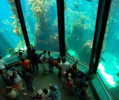 Monterey Bay Aquarium Monterey United States Timings
