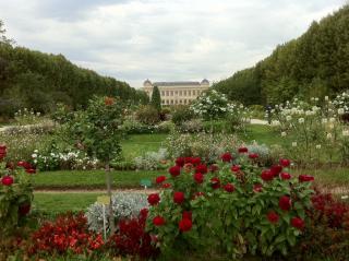 chenshan botanic gardens