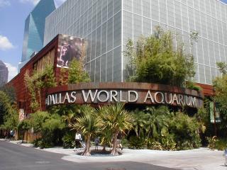 The Dallas World Aquarium