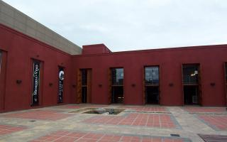 Museo De La Vid Yel Vino