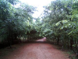Kambalkonda Wildlife Sanctuary