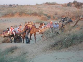 dunes safari and camp rajputana, bikaner