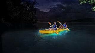 Yokahu Kayak Trips