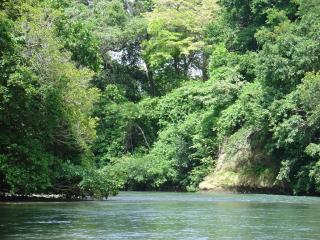 Costa Rica Unique Transfer And Tours