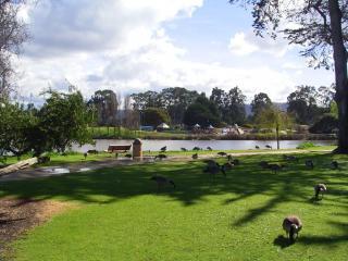 el estero park complex