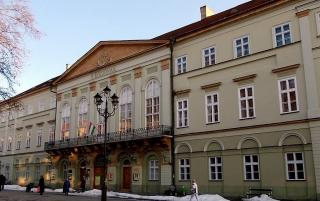 rippl ronai museum