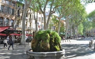 mossy fountain