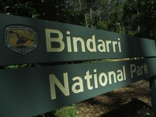 bindarri national park