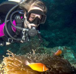 Scuba Bula Dive Centre