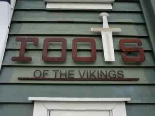roots of vikings