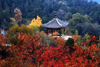 Qi Xia Mountain