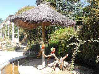 Jardin Exotique - Zoo De Sanary