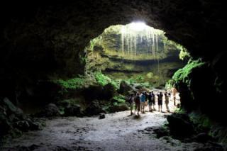 Cave  Oleg  Bat House