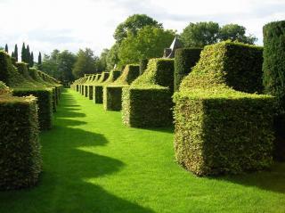 Montmarin Gardens