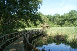 Parque Isla Salamanca