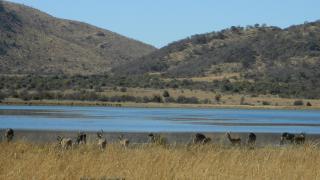 mankwe dam region
