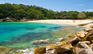 shelly beach