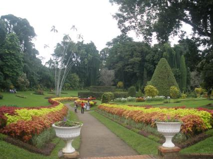 Botanical Gardens Kolkata Reviews Ticket Price Timings Address Triphobo