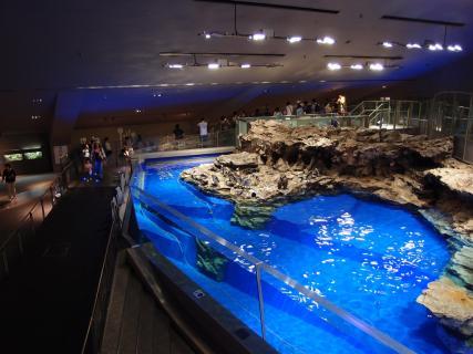 Sumida Aquarium Tokyo Ticket Price Timings Address