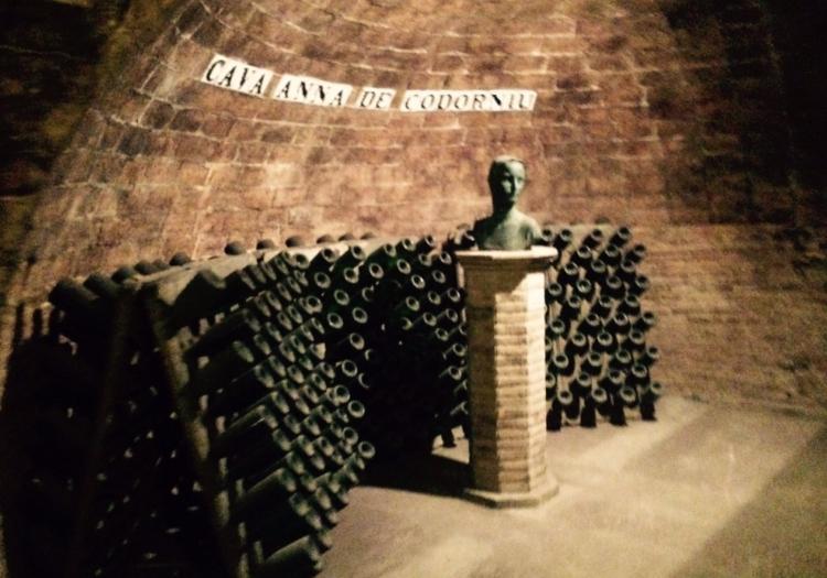 Montserrat And Codorniu Wine Cellars - Barcelona