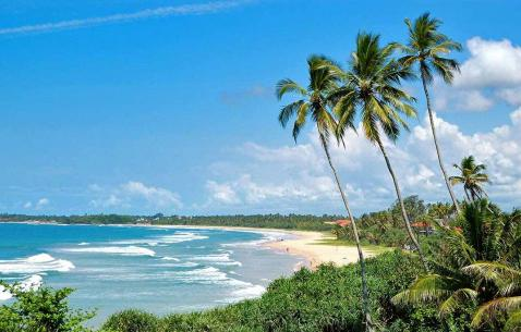 Things to do in Bentota