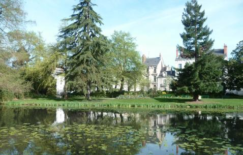 Things to do in Tours