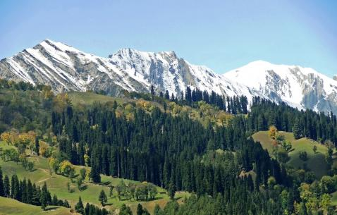 Things to do in Sonamarg