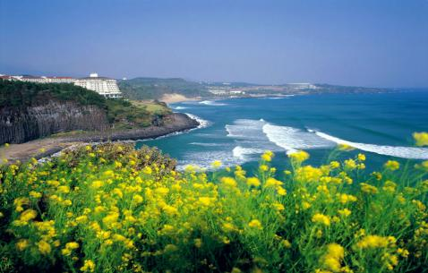 Things to do in Jeju-si