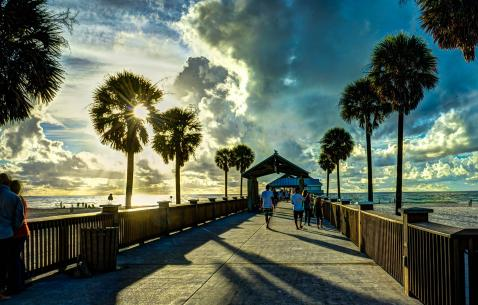 Adventure Activities in Clearwater