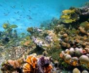 Bora Bora Itinerary 4 Days