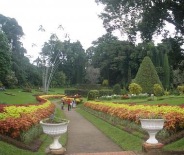 Botanical Gardens Ticket Prices Fort Worth Botanic Garden Half Price Tickets To Japanese