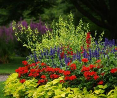 Botanical Gardens Tours