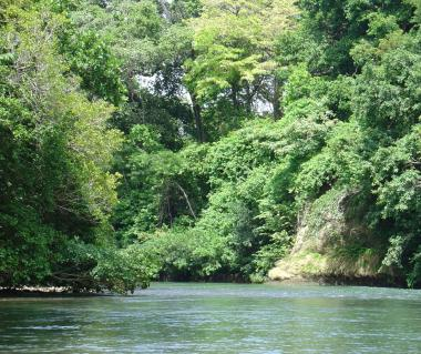 Costa Rica Unique Transfer And Tours Tours