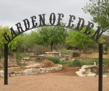 Garden Of Eden Knysna Ticket Price Timings Address Triphobo