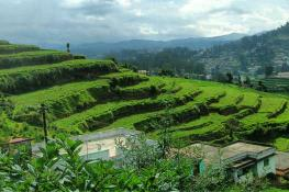 image of ooty