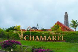 Chamarel, Black River, Mauritius