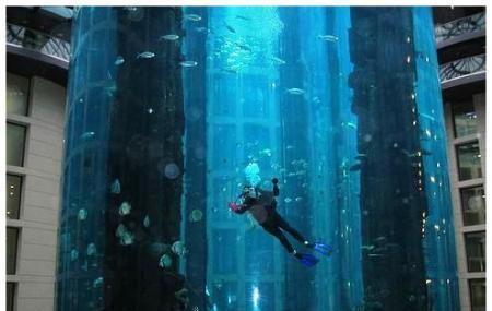 The Aquadom And Sea Life Berlin Centre Image