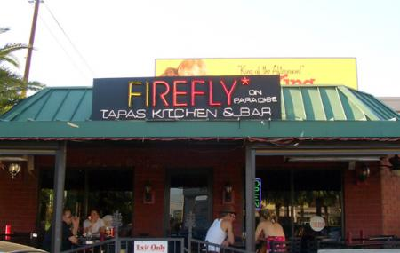Firefly Image
