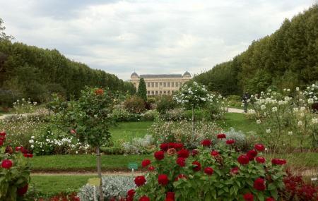 Chenshan Botanic Gardens Image