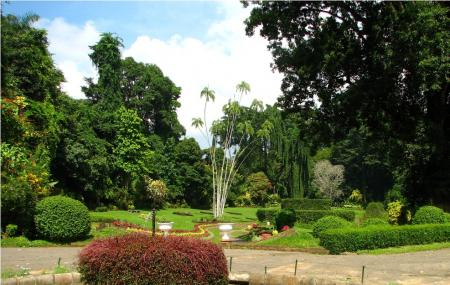 Royal Botanic Gardens   Review