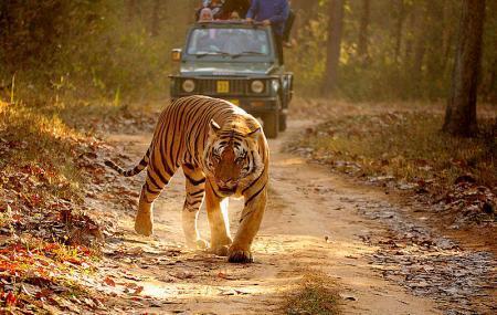 Kanha Kisli National Park, Jabalpur