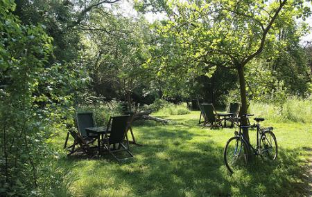 The Orchard Tea Garden, Cambridge