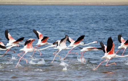 Bundala National Park, Galle