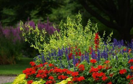 Botanical Gardens, Visby