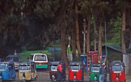 Tuk Tuk And Taxi Tours, Nuwara Eliya
