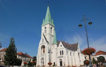 Cathedral Of Kaposvar Image