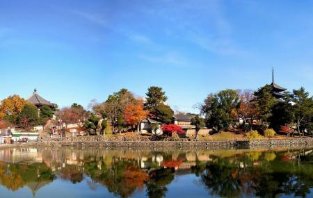 Sarusawa-ike Image