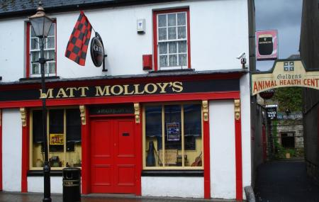 Matt Molloy's Image