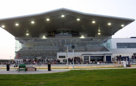 Curraheen Park Greyhound Stadium, Cork