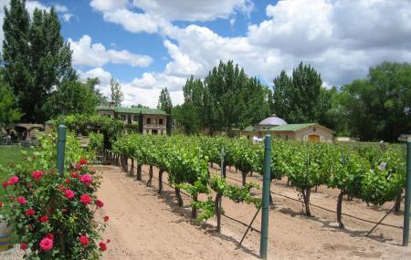 Casa Rondena Winery Image
